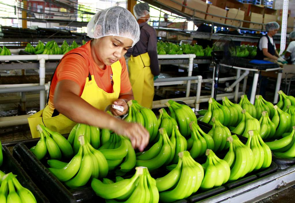 Economía de Honduras 7