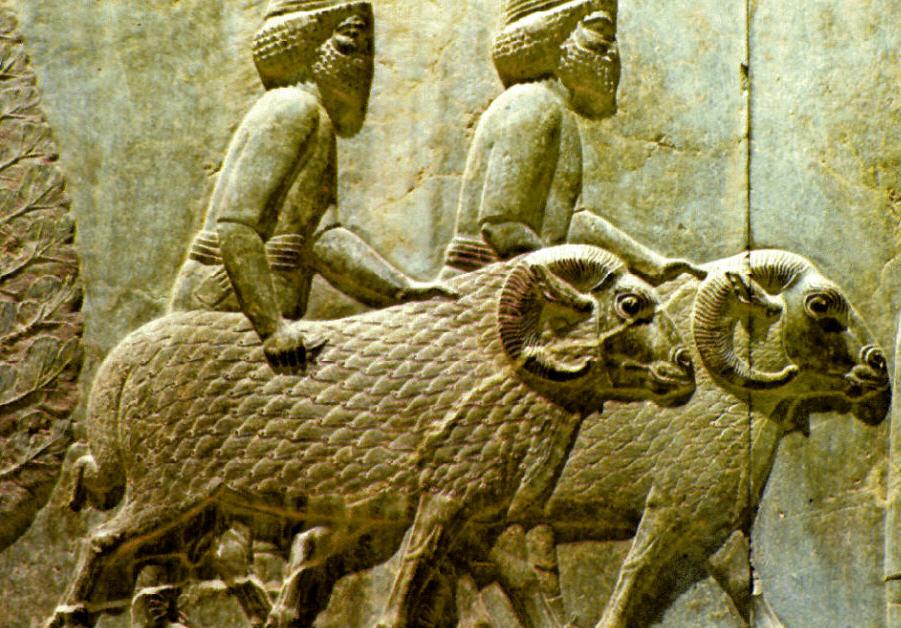 Economía de Mesopotamia 13