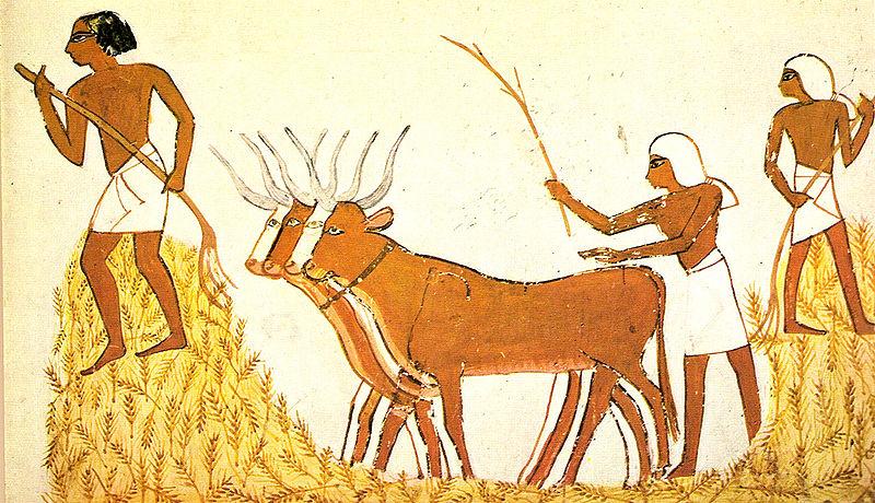Economía de Mesopotamia 18