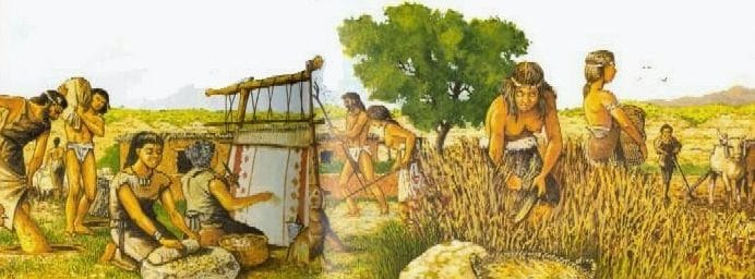 Economía de Mesopotamia 2