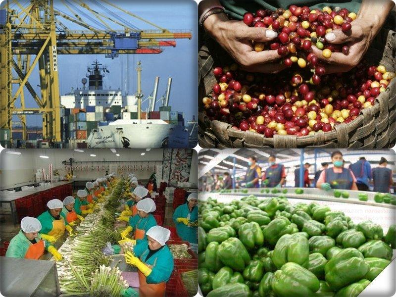 Economía de Ecuador